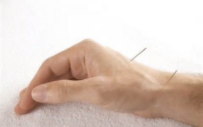 Mark Siegrist, L.Ac. Acupuncture, Traditional Chinese Medicine in Reading, PA